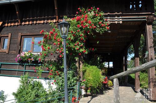 g-almresort-nikolaus-berger-baumschlagerberg-almgasthof-hotel-alm-huette