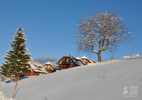 g-hutten-winter-urlaub-berge-baumschlagerberg-weihnachtsferien-silvester