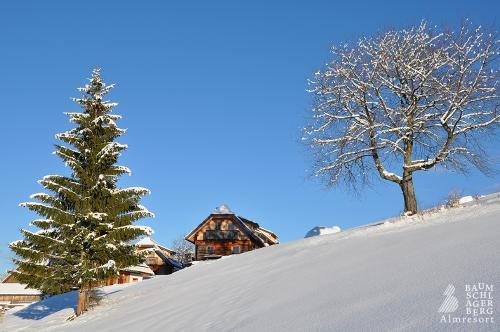 g-winterurlaub-schneewanderung-schlittenfahrt-pferdeschlitten-familie-romantik